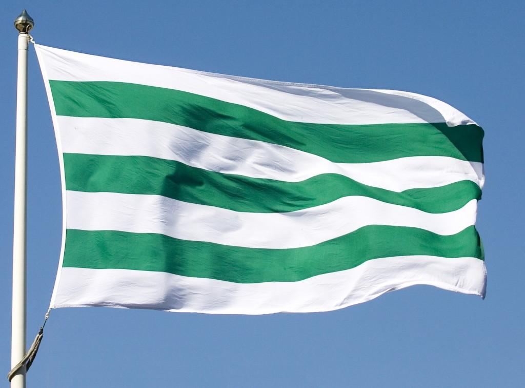 Bildresultat för bajen flagga